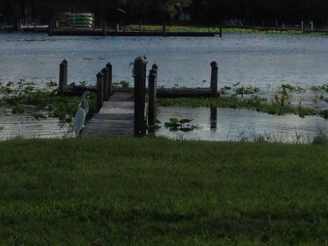 Awesome house on  river with private dock. - DeLand - Ev