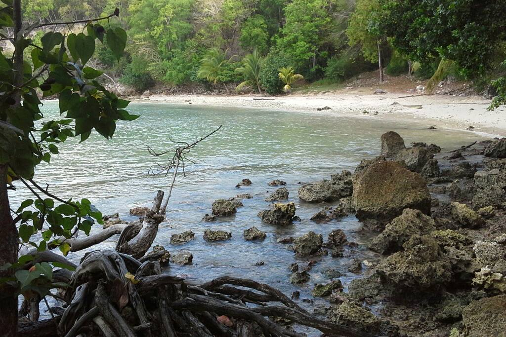 Petit plage discrete