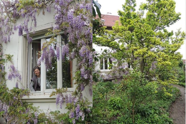 Le charme du vieux Dornach, maison entière - Mulhouse - Huis