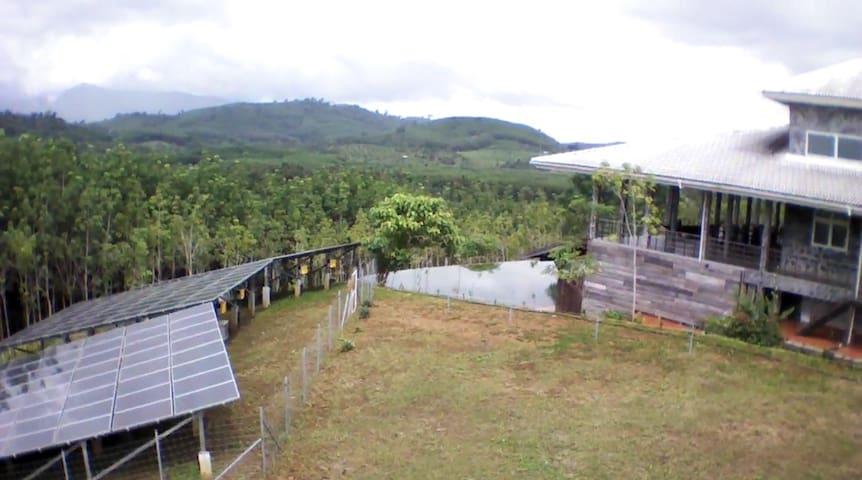 The green Homestay