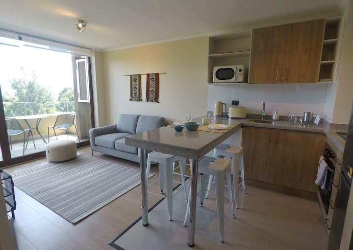 New apartment first line lake Villarrica (8 Floor)