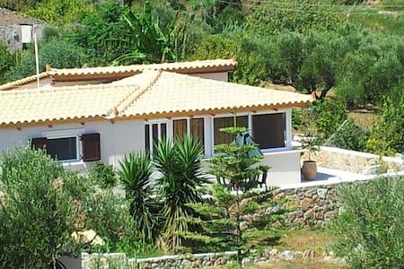 Private House in Vasilikos! - Vasilikos - Σπίτι