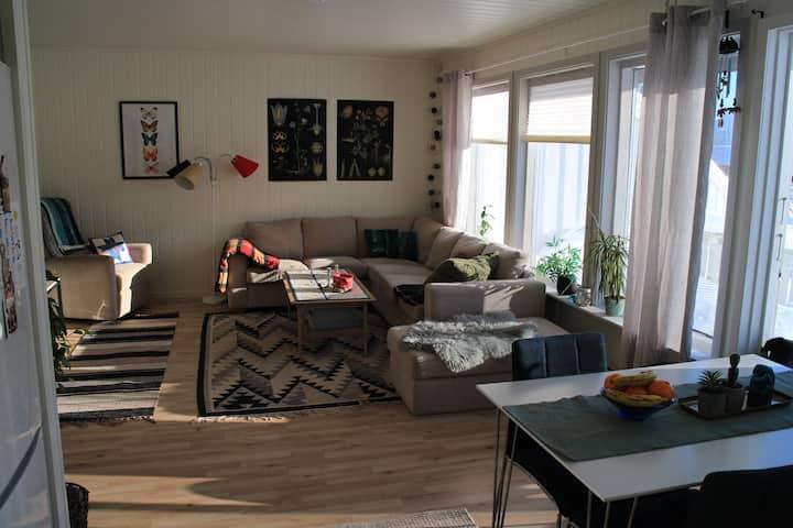 Trivelig og lettvint leilighet nær Sortland.
