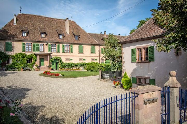 Gîte situé sur la route des vins d'Alsace