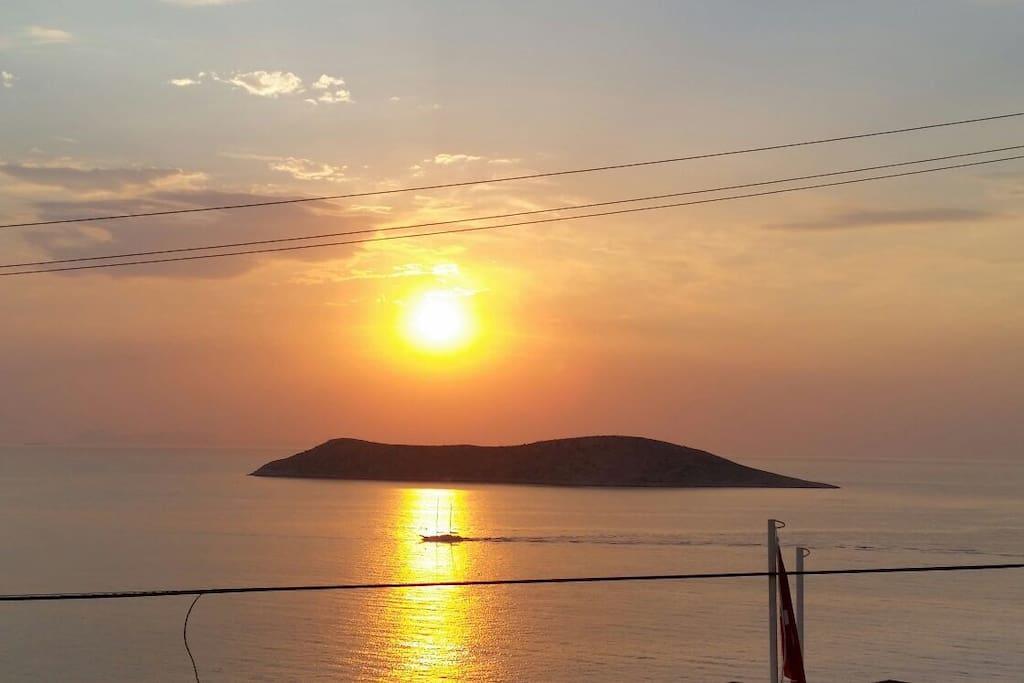 Sunset in Vista Site