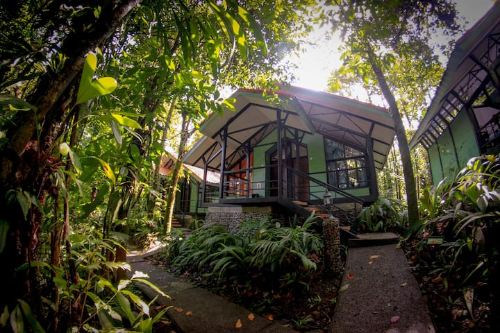 The best lodge for nature lovers and bird watchers