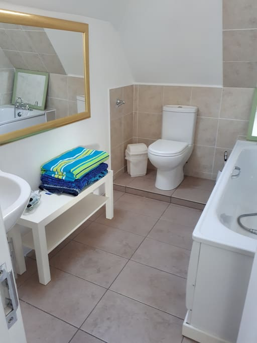 This is the bathroom for the loft beadroom.