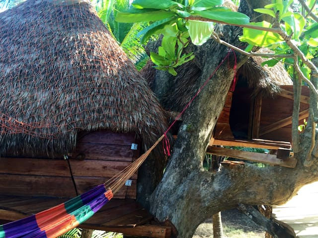Tree house. Be a bird! - Corn Island - Boomhut