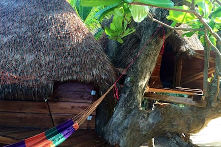 Tree house. Be a bird! - Corn Island
