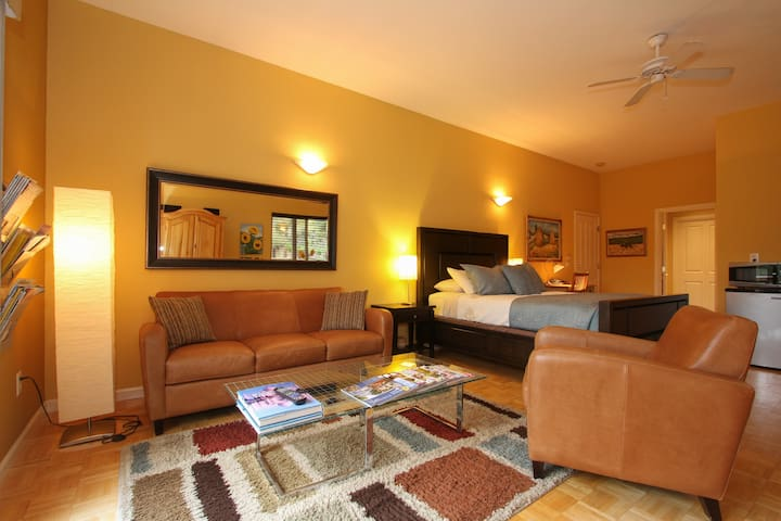 Chalk Hill Vlly Bright Big Studio - Healdsburg - Apartmen