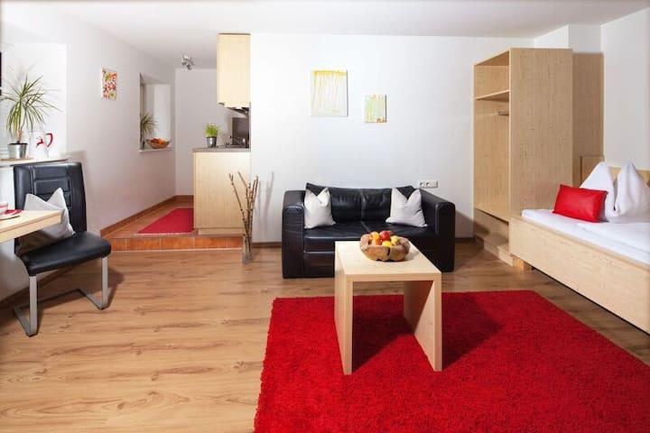 1-Pers.Apartment südlich von Salzburg, Erdgeschoss