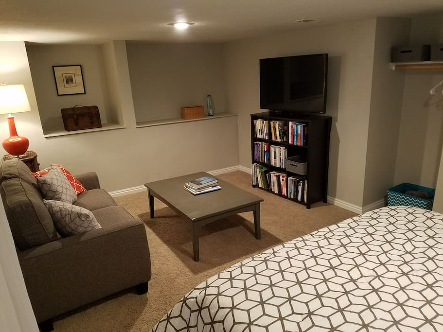 Basement with couch, bed, tv, closet, storage space