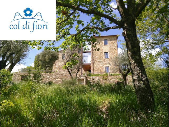 Spacious House for Peaceful Stay in Umbria - Aria