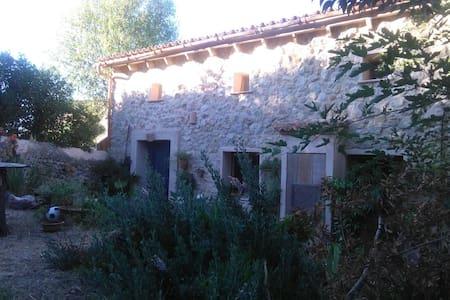 Habitacion en el paraiso - Palma - Casa