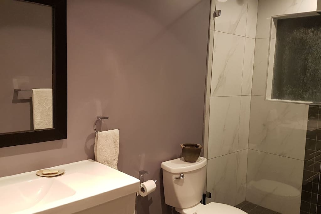 Modern walk in shower with soothing rain shower head, large 4 foot vanity, and radiant heated floor.