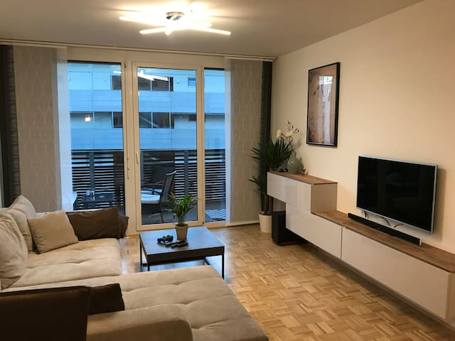 modern guestroom in Graz + FREE parking