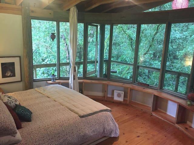 Casa Bosque Niebla, en Reserva Natural