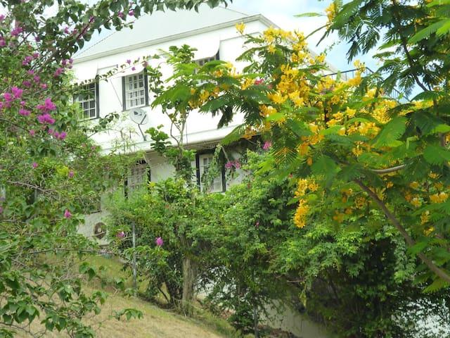Casa Mia Due ..Room Only with Amenities. - Buccoo - Villa