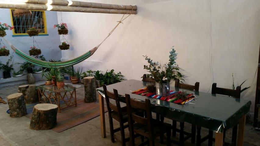 hermoso jardin y comedor de 12  puestos.