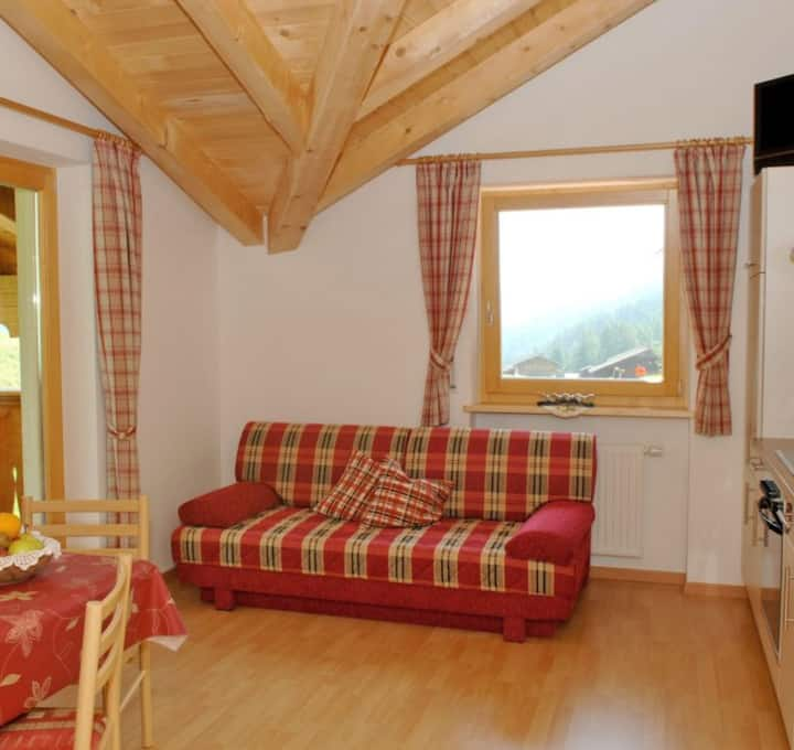 Vacation Home Maria STEINRÖSERL with Mountain View, Balcony, Garden, Wi-Fi & Sauna; Parking Available, Pets Allowed