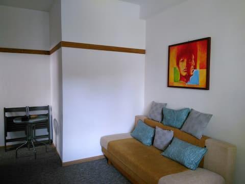Apartment in city center ANTI CORONA
