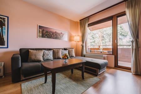 Luxury Apartment with 2 balcony's
