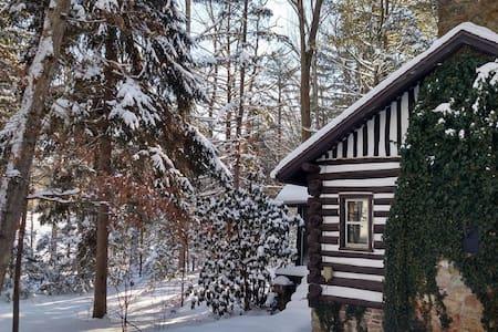 Log Cabin Near Gettysburg - Fayetteville