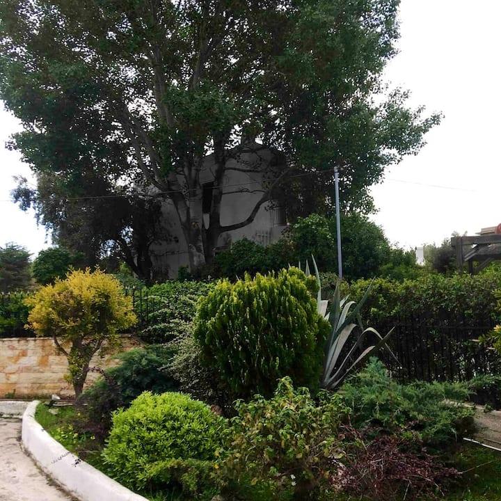 Cycladisch Familie Huis aan zee.