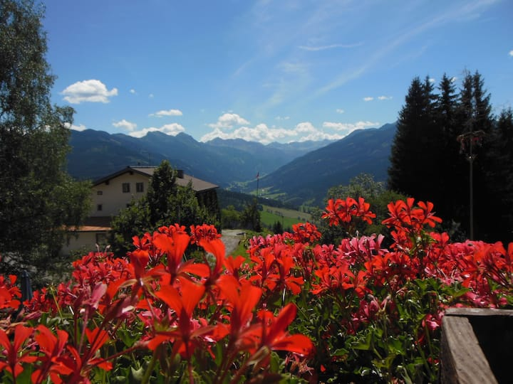 Salzburg Hallstatt Alpenferien hostel Sonnhof