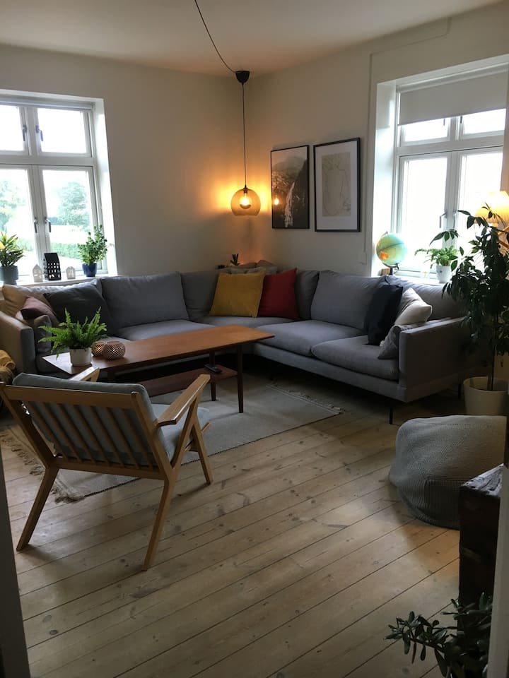Cozy apartment for rent in Odense City