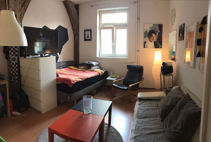 Centrally located semi-studio - Maastricht - Apartment