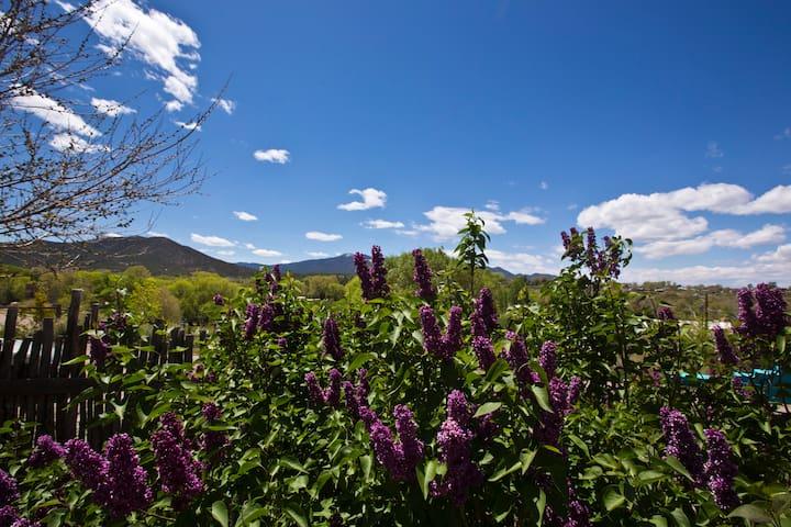 Historic Taos Style Adobe Mtn/Valley View Home! - Ranchos de Taos - House
