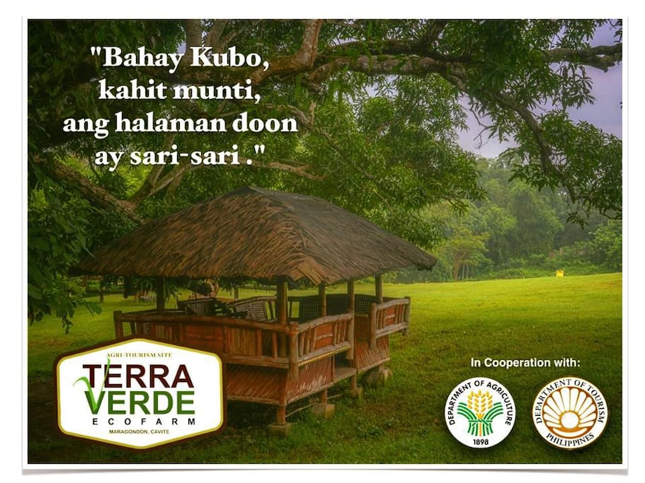 Feel the rural life in the Philippines. We are just 1 1/2 hour away from the Ninoy Aquino International Airport.