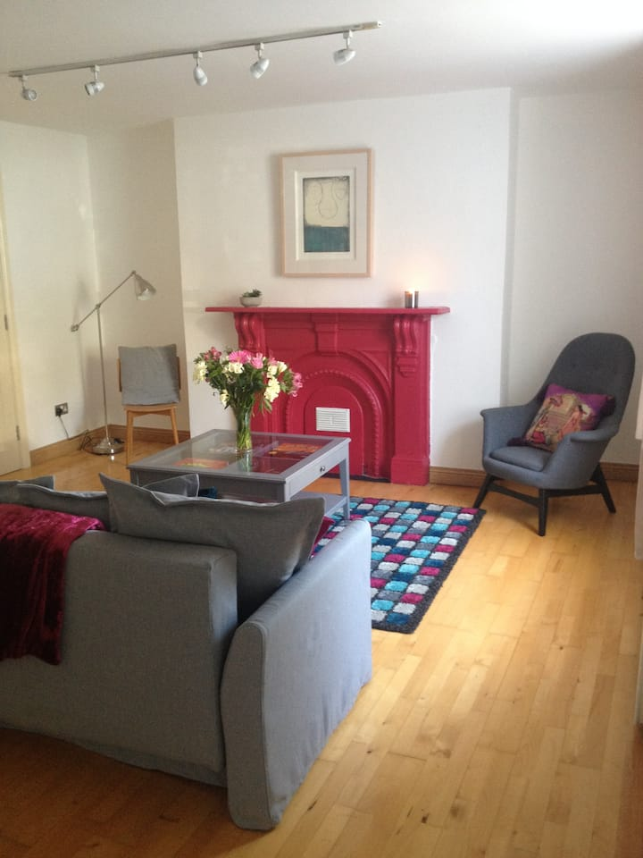 Spacious  Apt in Heart of City Ctr
