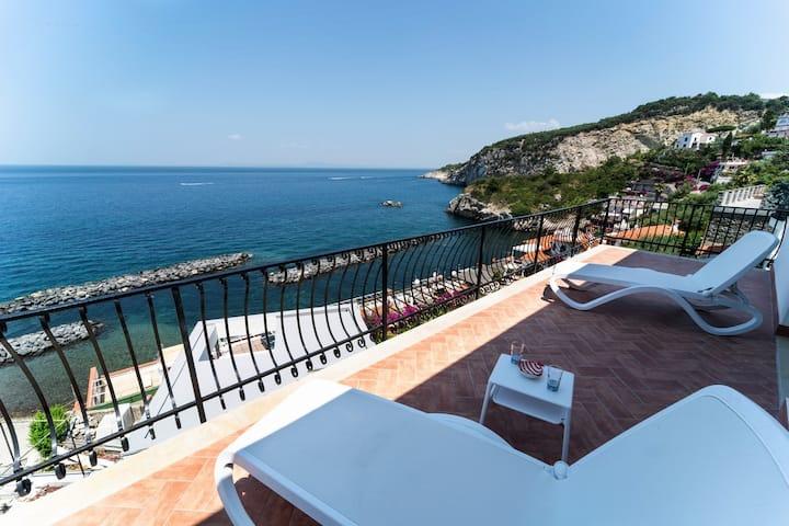 Amazing villa with private access to the sea -V752