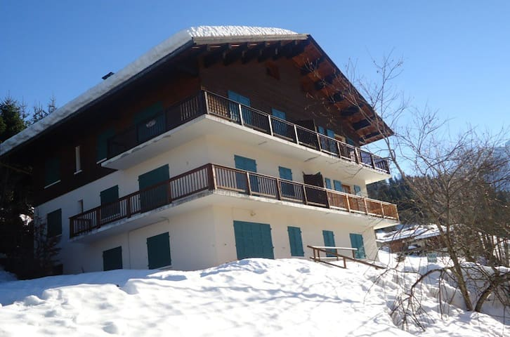 Spacious apartment with a stunning view! - La Clusaz - Pis