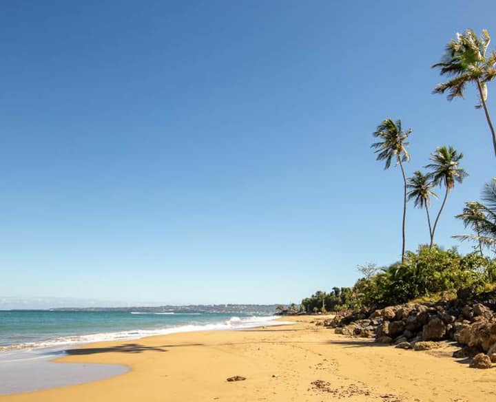 Ocean Escape-OPEN POOL!!  BEACH & OCEAN FRONT!!