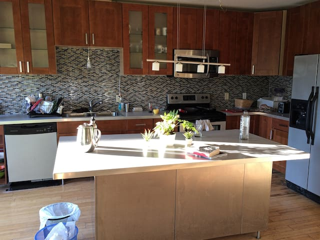 3rd fl BR, centrally located, good coffee - Providence - Apartment