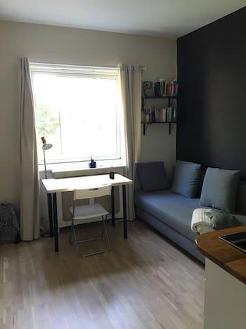 Nice studio apartment in Oslo, Frogner
