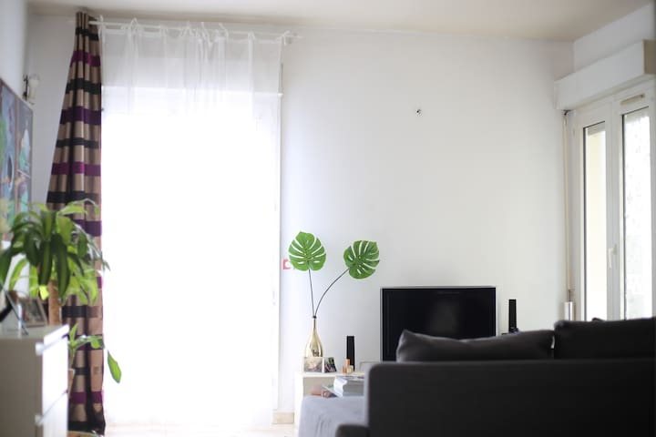 Room in spacious and cozy apartment