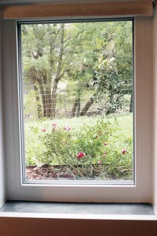guest bedroom_view
