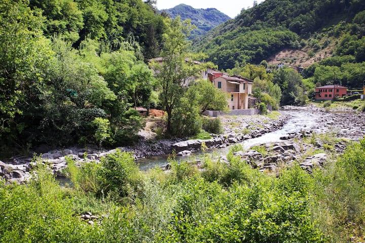 River Idyll