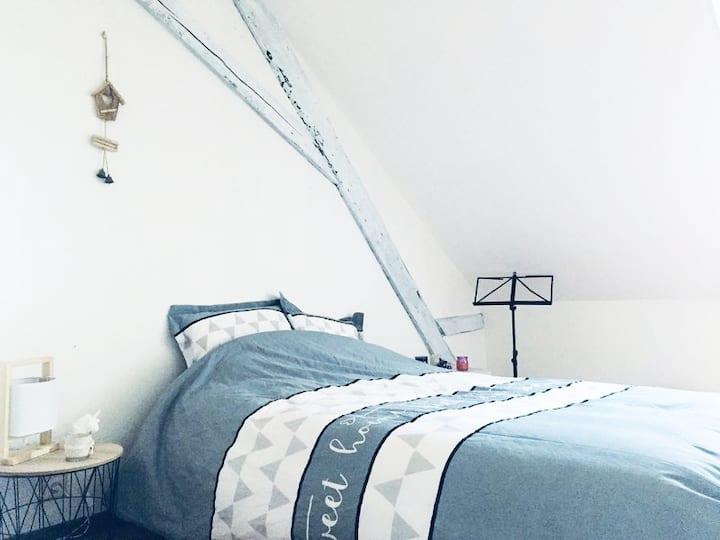 Chambre dans appartement atypique - BELFORT