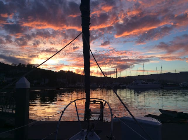 Cozy sleep on a beautiful sailboat - Vallejo - Barco