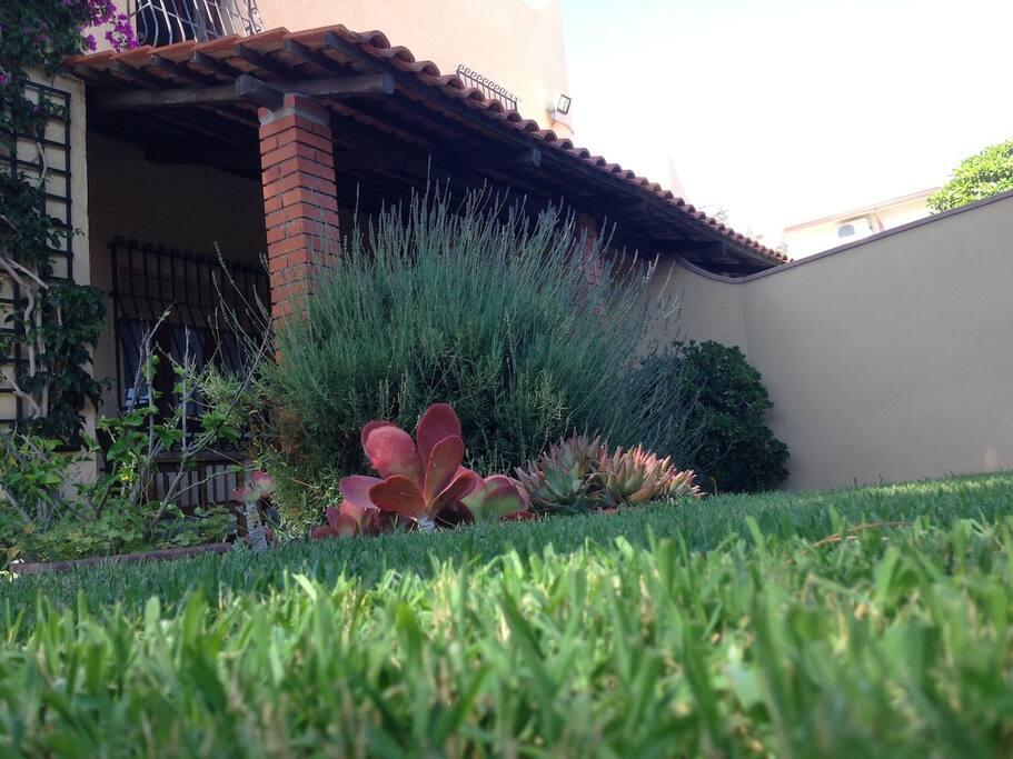il prato del giardino, fresco e soffice;