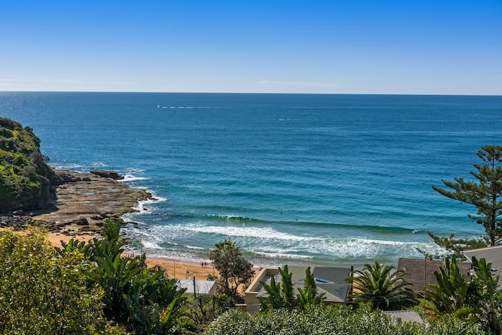On top of the world in Whale Beach