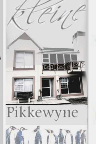 Kleine Pikkewyne