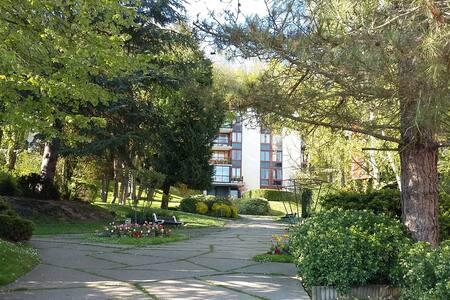 Bel appartement 91 M2 dans résidence avec piscine - Jouy-en-Josas