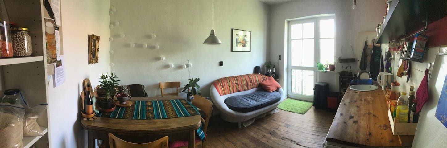Cozy flat with 2 rooms in Mannheim for August