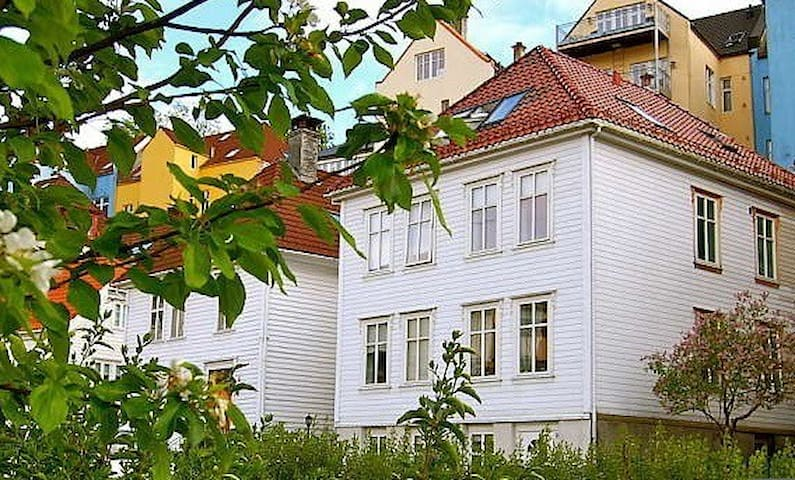 Comfortable central apt, in lovely neighborhood - Bergen - Apartment